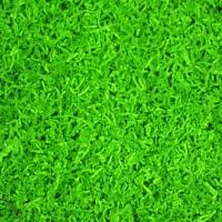 Farbton Lindgrün