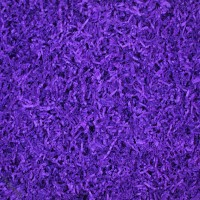 Farbton Violett