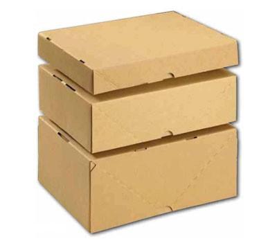 kartonagen transport verpackungen versand mailing lagerkarton st lpdeckelkarton aus wellpappe. Black Bedroom Furniture Sets. Home Design Ideas